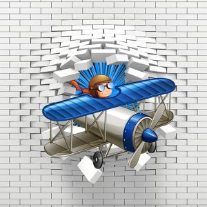 3D avion foto tapet kengur